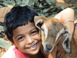 Young boy hugging goat